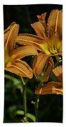 Trio Of Orange Tiger Lilies Beach Towel