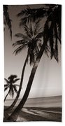 Triple Palms Beach Towel