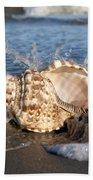 Triton Shell  Beach Towel