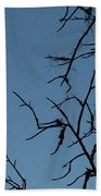 Trompe L Oeil Moon Beach Towel
