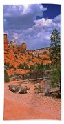 Tropic Canyon Bridge In Bryce Canyon Np Utah Beach Towel