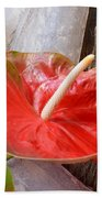 Tropical Beauty Beach Towel