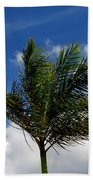 Tropical Breeze Beach Towel