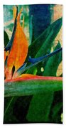 Tropical Eden Beach Towel