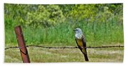 Tropical Kingbird Beach Sheet