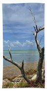 Tropical Oasis Beach Towel