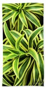 Tropical Plant Beach Towel