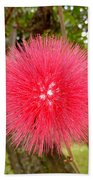 Tropical Red Puff Beach Towel