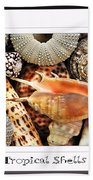 Tropical Shells... Greeting Card Beach Towel by Kaye Menner
