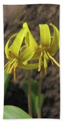 Trout Lily 1068 Beach Towel