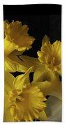 Trumpet Daffodils Beach Towel