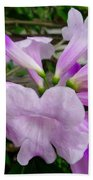 Trumpet Flower 11 Beach Towel