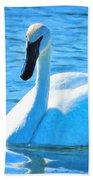 Trumpeter Swan Impressions Beach Towel