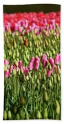 Tulip-1 Beach Towel