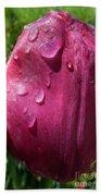 Tulip After The Rain Beach Sheet