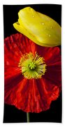 Tulip And Iceland Poppy Beach Sheet