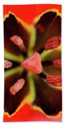 Tulip At Amatzia Forest - 4 Beach Towel