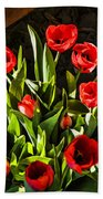 Tulip Beauties Beach Towel