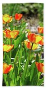 Tulip Bouquet Beach Towel
