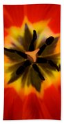 Tulip Explosion Kaleidoscope Beach Sheet