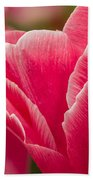 Tulip Layers Beach Towel