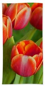 Tulip Patch Beach Towel