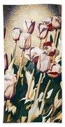 Tulip Sheltered Beach Towel