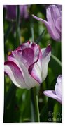 Tulip Splendor Beach Towel