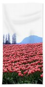 Tulip Town 3 Beach Towel