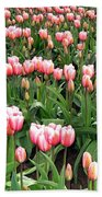 Tulip Town 8 Beach Towel