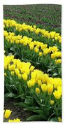 Tulip Town 9 Beach Towel