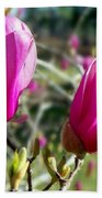 Tulip Tree Blossoms Beach Towel