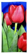 Tulipfest 1 Beach Towel