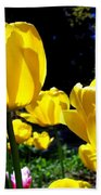 Tulipfest 5 Beach Towel