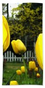 Tulipfest 8 Beach Towel