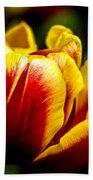Tulips 7 Beach Towel