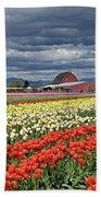 Tulips And Barn Beach Sheet