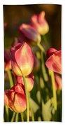 Tulips In Public Garden Beach Towel