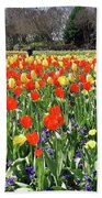 Tulips In The Park. Beach Towel