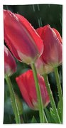Tulips In The Rain Beach Sheet
