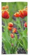 Tulips In The Springtime Beach Towel