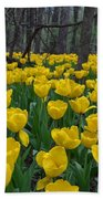 Tulips In The Woods Beach Towel