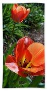 Tulips Wearing Orange Beach Towel