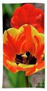 Tulips Yellow Red Beach Towel