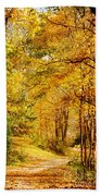 Tunnel Of Gold Beach Towel