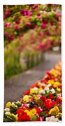 Tunnel Of Roses Beach Towel