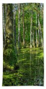 Tupelo Trees In Mississippi  Beach Towel