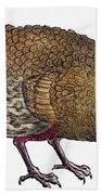 Turkey, 1560 Beach Towel