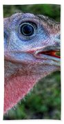 Turkey Named Thanksgiving Beach Towel