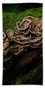 Turkey Tail Beach Towel